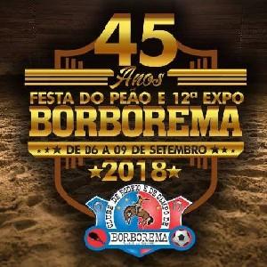 Festa do Peão e 12º Expo Borborema