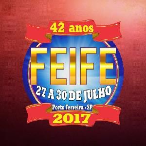 FEIFE 2017